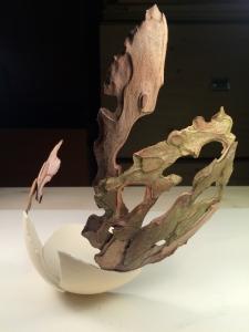 Medium: Bark, eggshell. Size: Dimensions variable. Year: 2015